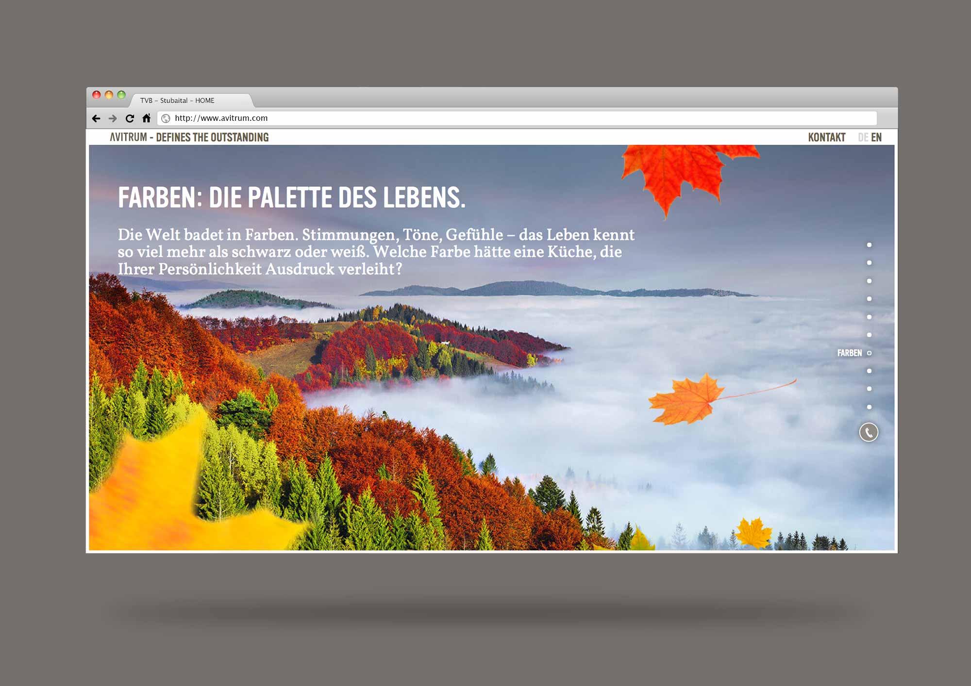 AVITRUM_website_browser_template_16