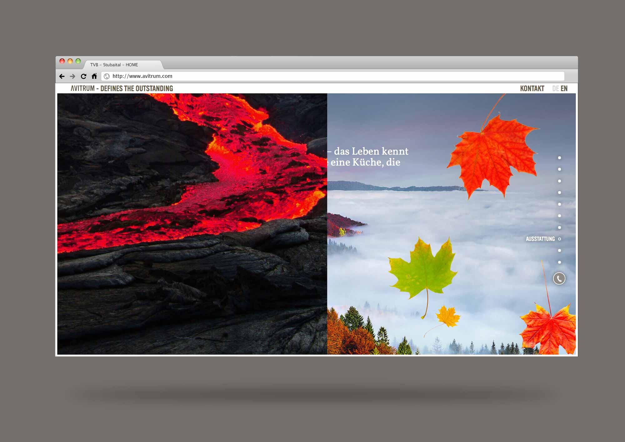 AVITRUM_website_browser_template_17